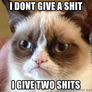 Angry Cat Meme - I DONT GIVE A SHIT I GIVE TWO SHITS