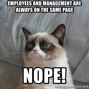 Grumpy cat good - employees and management are always on the same page nope!
