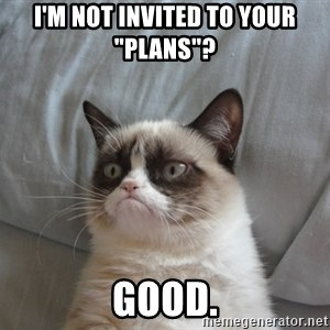 """Grumpy cat good - I'm not invited to your """"plans""""?                                                                      Good."""
