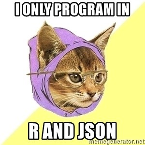 Hipster Cat - I only program in  R and JSON