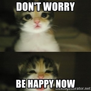 Adorable Kitten - don't worry be happy now