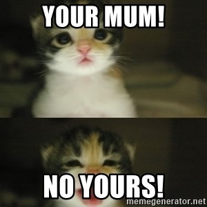 Adorable Kitten - Your mum! No Yours!