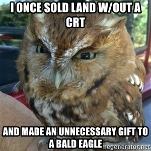 Overly Angry Owl - I once sold land w/out a CRT and made an unnecessary gift to a bald eagle