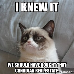 Grumpy cat good - I knew it We should have bought that Canadian real estate.