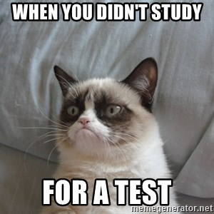 Grumpy cat good - when you didn't study  for a test