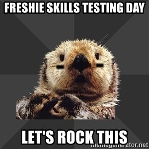 Roller Derby Otter - freshie Skills testing day let's rock this
