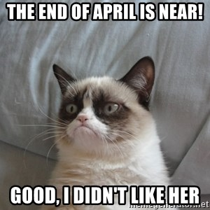 Grumpy cat good - The end of april is near! Good, I didn't like her