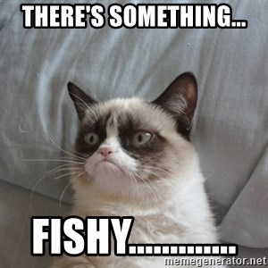 Grumpy cat good - There's something... Fishy.............