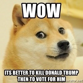 Dogee - wow  its better to kill donald trump then to vote for him