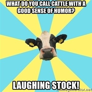 Comparatist Cow  - what do you call cattle with a good sense of humor? laughing stock!