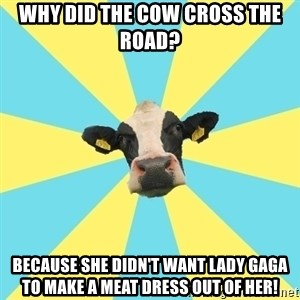 Comparatist Cow  - why did the cow cross the road? because she didn't want lady gaga to make a meat dress out of her!