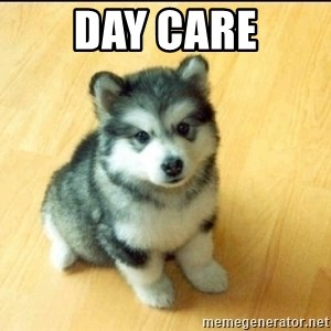 Baby Courage Wolf - DAY CARE