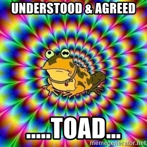 hypno toad - UnderstOOD & aGREED  .....tOAD...
