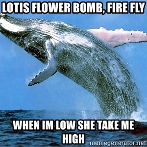 whaleeee - Lotis flower bomb, fire fly when im low she take me high