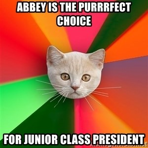 Advice Cat - Abbey is the Purrrfect choice for Junior class president