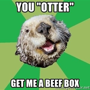 """Ocd Otter - you """"otter"""" get me a beef box"""