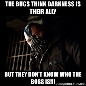 Bane Meme - The bugs think darkness is their ally but they don't know who the BOSS is!!!