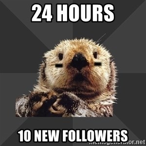Roller Derby Otter - 24 Hours 10 New Followers