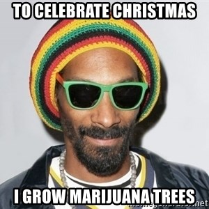 Snoop lion2 - TO CELEBRATE CHRISTMAS I GROW MARIJUANA TREES