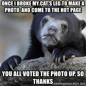 Confession Bear - once i broke my cat's leg to make a photo  and come to the hot page you all voted the photo up. so thanks