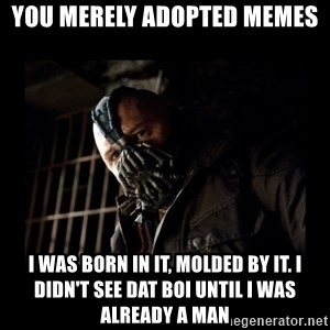 Bane Meme - You merely adopted memes i was born in it, molded by it. I didn't see dat boi until I was already a man