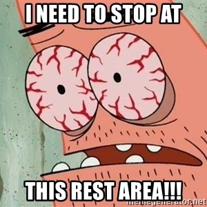 Stoned Patrick - I Need to stop at This Rest Area!!!