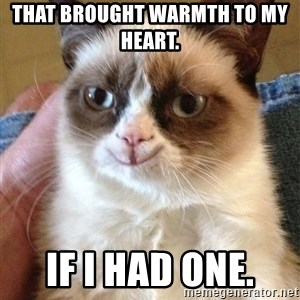 Happy Grumpy Cat 2 - That brought warmth to my heart.  If I had one.
