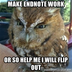 Overly Angry Owl - make endnote work or so help me I will flip out