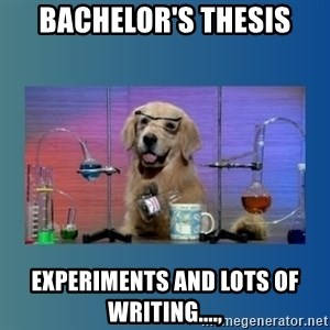 Chemistry Dog - Bachelor's Thesis Experiments and lots of writing....,