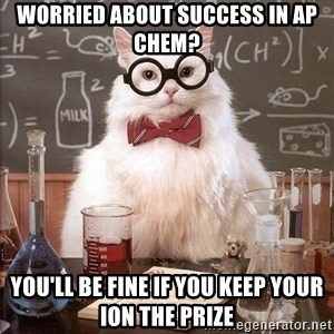 Chemistry Cat - Worried about success in AP Chem? You'll be fine if you keep your ion the prize