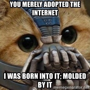 bane cat - You Merely adopted the internet I was born into it; molded by it