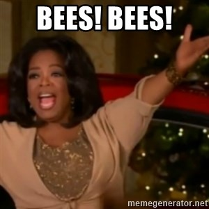 The Giving Oprah - BEES! BEES!