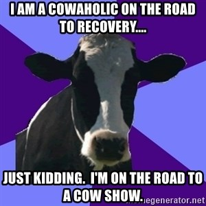 Coworker Cow - I am a cowaholic on the road to recovery.... just kidding.  I'm on the road to a cow show.