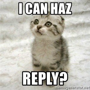 Can haz cat - I CAN HAZ REPLY?