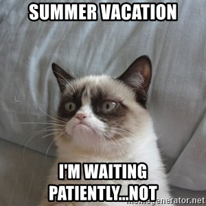 Grumpy cat good - SUMMER VACATion I'm waiting patiently...not