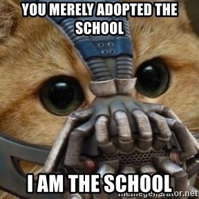 bane cat - You merely adopted the school I am the school