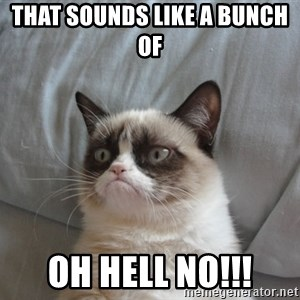 Grumpy cat good - That sounds like a bunch of  oh hell no!!!