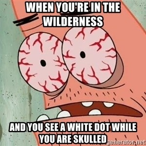 Stoned Patrick - when you're in the wilderness  and you see a white dot while you are skulled