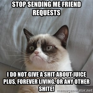 Grumpy cat good - STOP SENDING ME FRIEND REQUESTS I DO NOT GIVE A SHIT ABOUT JUICE PLUS, FOREVER LIVING, OR ANY OTHER SHITE!