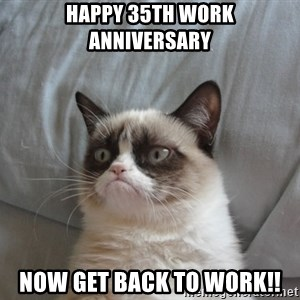 Grumpy cat good - Happy 35th work anniversary NOW GET BACK TO WORK!!