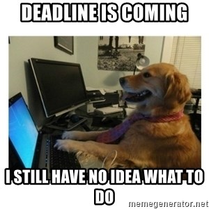 No Computer Idea Dog - DEAdline is coming i still have no idea what to do