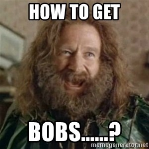 What Year - how to get bobs......?