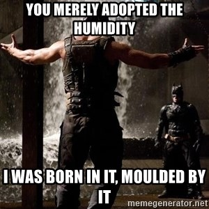 Bane Let the Games Begin - You merely adopted the humidity I was born in it, moulded by it