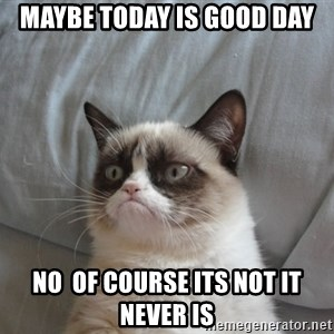 Grumpy cat good - maybe today is good day no  of course its not it never is