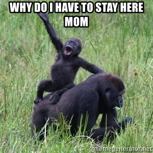 Happy Gorilla - Why do I have to stay here mom