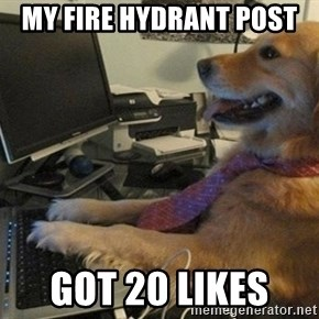 I have no idea what I'm doing - Dog with Tie - my fire hydrant post  got 20 likes
