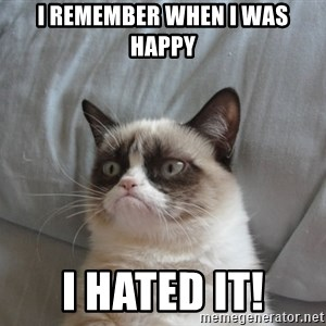 moody cat - i remember when i was happy i hated it!