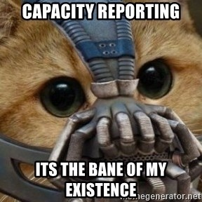 bane cat - Capacity reporting Its the bane of my existence