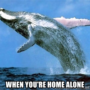 whaleeee -  when you're home alone