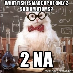 Chemistry Cat - What fish is made up of only 2 sodium atoms? 2 Na